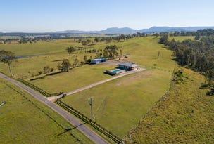 700 Luskintyre Road, Luskintyre, NSW 2321
