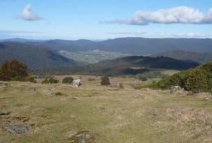 PID 6807155 Tasman Highway, Pyengana, Tas 7216
