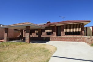 17 Morgan Street, Cannington, WA 6107
