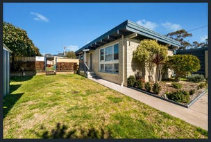 4 Gore St, Higgins, ACT 2615