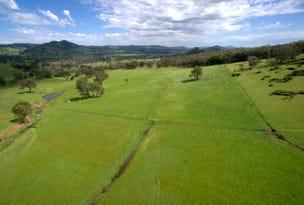 Splitters Gully Nundle Creek Road, Nundle, NSW 2340