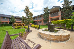 Lacewood 1/1 Centenary Avenue, Northmead, NSW 2152