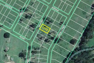 Lot 1219 Maxted Street, Renwick, NSW 2575
