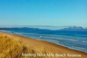 Beachfront Dolphin Sands Road, Dolphin Sands, Tas 7190