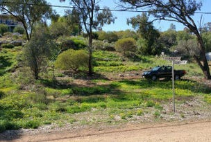Lot 59 Kookaburra Lane, Idyll Acres, Morgan, SA 5320