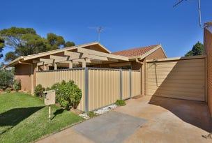 14 Hibiscus Drive, Mildura, Vic 3500