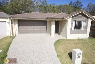 36 Riley Peter Place, Cleveland, Qld 4163