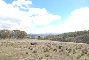 Lot 2 Tom Groggin, Nimmitabel, NSW 2631