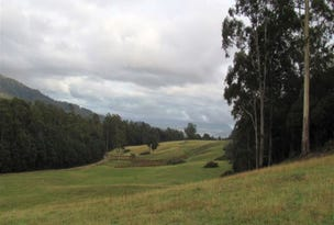 118.7ha Bogan Road, Quamby Brook, Tas 7304