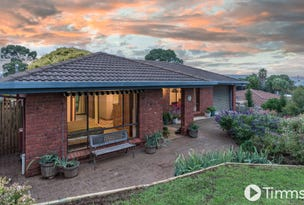 6 Peter Court, O'Halloran Hill, SA 5158