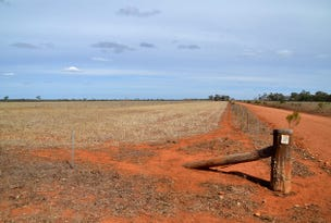* Cable Downs, Cobar, NSW 2835