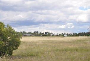 2 Alcheringa Dr, Forbes, NSW 2871