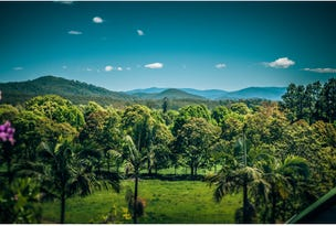 24 Hobson Close, Bellingen, NSW 2454