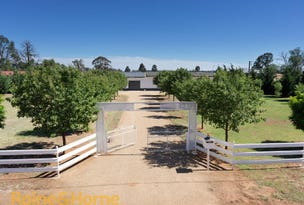 724 Lockhart Road, Belfrayden, NSW 2650