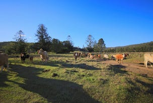 Lots 195 & 178 Smiths Creek Road, Copmanhurst, NSW 2460
