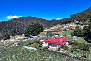 543 Mathinna Plains Road, Ringarooma, Tas 7263