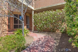 41/12 Albermarle Place, Phillip, ACT 2606