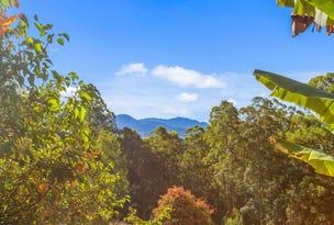 Lot24/1283 Byrrill Creek Road, Tyalgum, NSW 2484