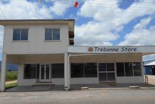 52 Abergowrie Road, Trebonne, Qld 4850