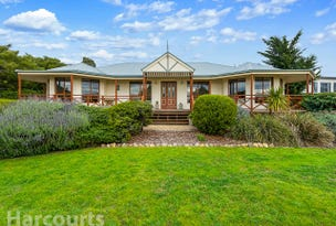 13 Meadows Place, Opossum Bay, Tas 7023