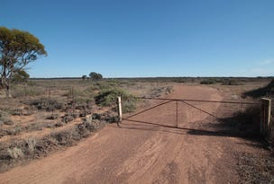 Lot 23 Angle Rd, Brownlow, SA 5374