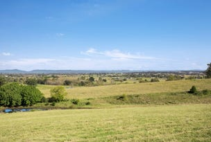 Lot 107 Mount Harris Drive, Maitland Vale, NSW 2320