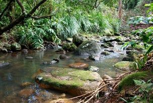 484 Upper Wilsons Creek Road, Upper Wilsons Creek, NSW 2482