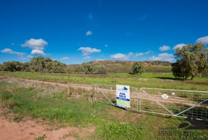 Lot 82 Murphy Norris Road, Nanson, WA 6532
