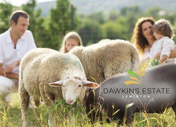 Dawkins Estate Lewiston Lewiston