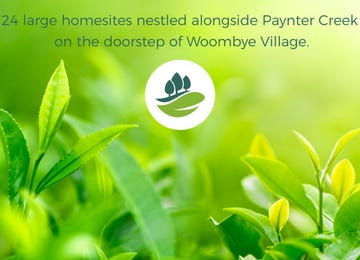 Paynter Park Woombye