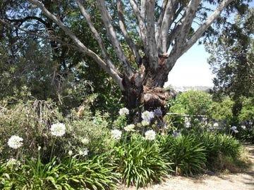 6 Camp Street, Adelong, NSW 2729