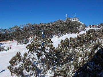 705/207 Summit Road, Mount Buller, Vic 3723