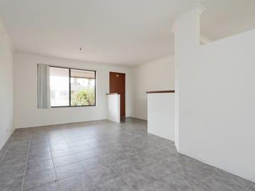 6 Corkwood Street, Banksia Grove, WA 6031