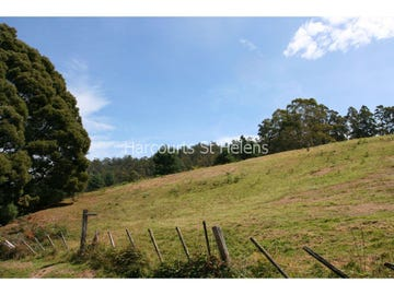35 Anchor Road, Pyengana, Tas 7216