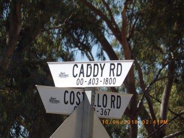 S209 Caddy Road, Loveday, SA 5345