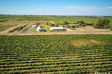 Katnook Estate 15310 Riddoch Highway Coonawarra SA 5263 - Image 3