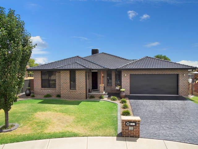 41 Semillon Drive, Tamworth, NSW 2340
