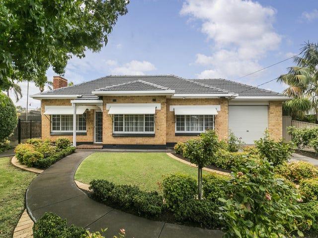 16 Elm Terrace, Glenelg North, SA 5045