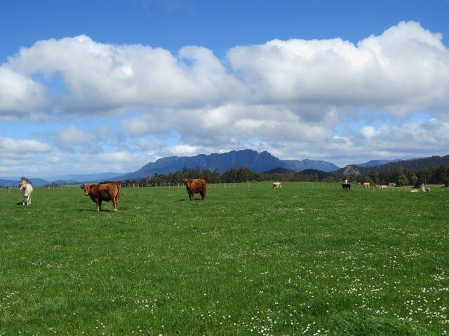 119 Moreys Road, Barrington, Tas 7306