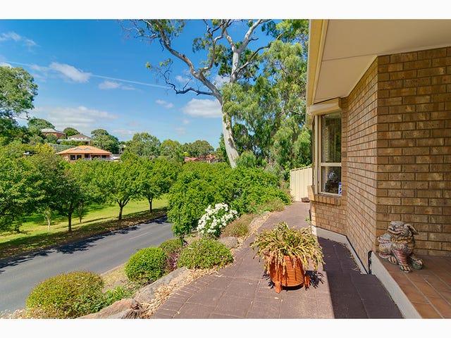 111 Homestead Drive, Aberfoyle Park, SA 5159