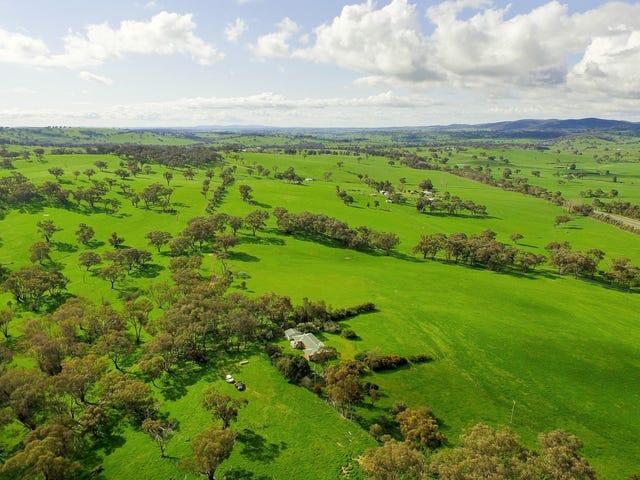 Buringa & Patrician - 1609 Mitchell Highway, Orange, NSW 2800