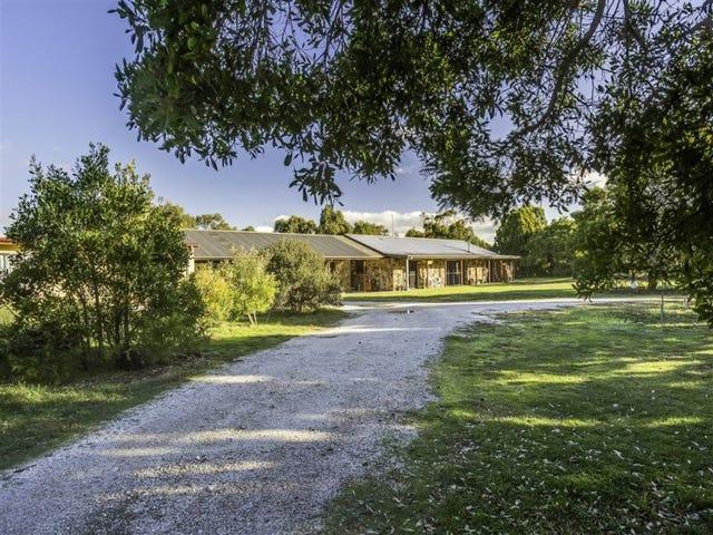 337 Sandy Points Road, Bridport, Tas 7262