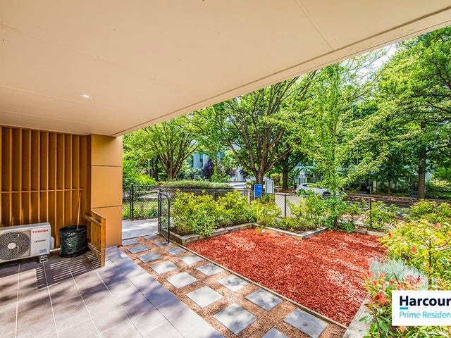 1/29 Forbes Street, Turner, ACT 2612