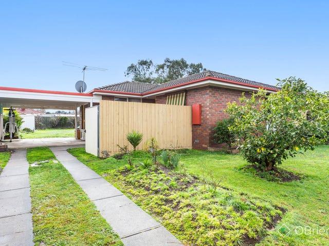 10 Franleigh Drive, Narre Warren, Vic 3805