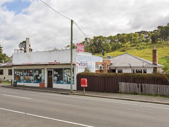 57 Punchbowl Road, Punchbowl, Tas 7249