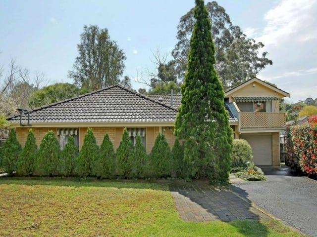 25 Francis Street, Castle Hill, NSW 2154