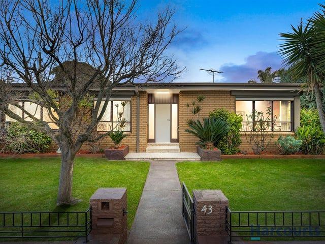 43 Pasadena Cres, Bentleigh East, Vic 3165