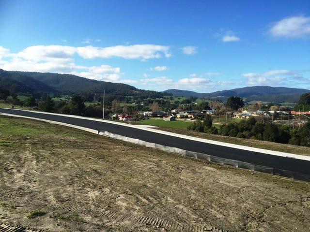 Lot 14 Silver Hill Road, Cygnet, Tas 7112
