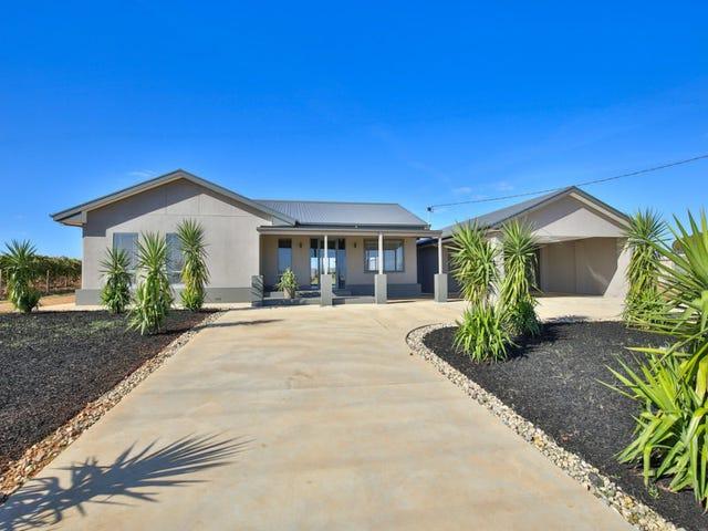 169 White Cliff Avenue, Mildura, Vic 3500