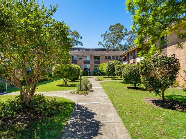 2/51 Burns Bay Road, Lane Cove, NSW 2066